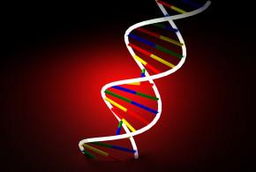 Como Afecta la Genética en tu Proceso de Envejecimiento